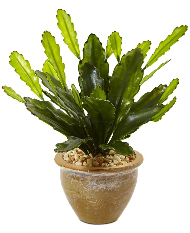 Nearly Natural Double Cactus Artificial Plant in Glazed Clay Pot