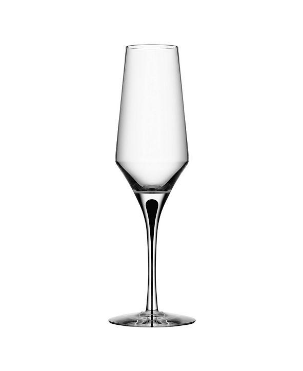 Orrefors Metropol Champagne Pair