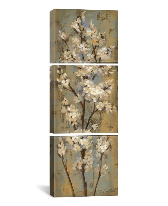 "iCanvas Almond Branch Ii by Silvia Vassileva Gallery-Wrapped Canvas Print - 48"" x 16"" x 1.5"""