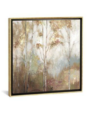 "Fine Birch Ii by Allison Pearce Gallery-Wrapped Canvas Print - 37"" x 37"" x 0.75"""