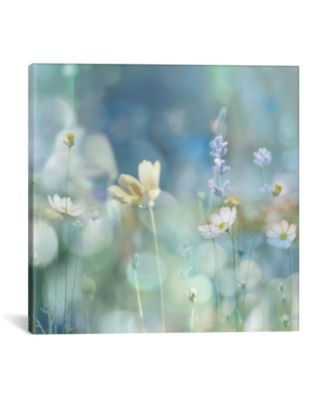 """Morning Meadow Ii by Kate Carrigan Wrapped Canvas Print - 37"""" x 37"""""""