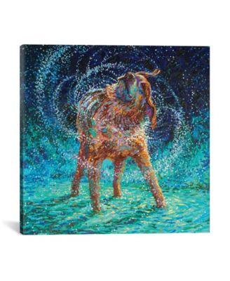 "Old Rem by Iris Scott Wrapped Canvas Print - 18"" x 18"""