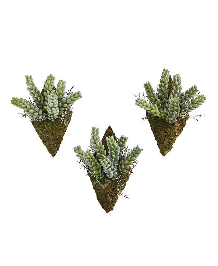 "Nearly Natural - 8"" Sedum Succulent Artificial Wall Decor Plant, Set of 3"