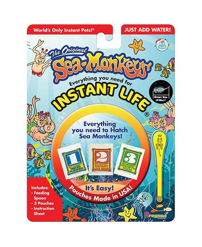Sea Monkey's -