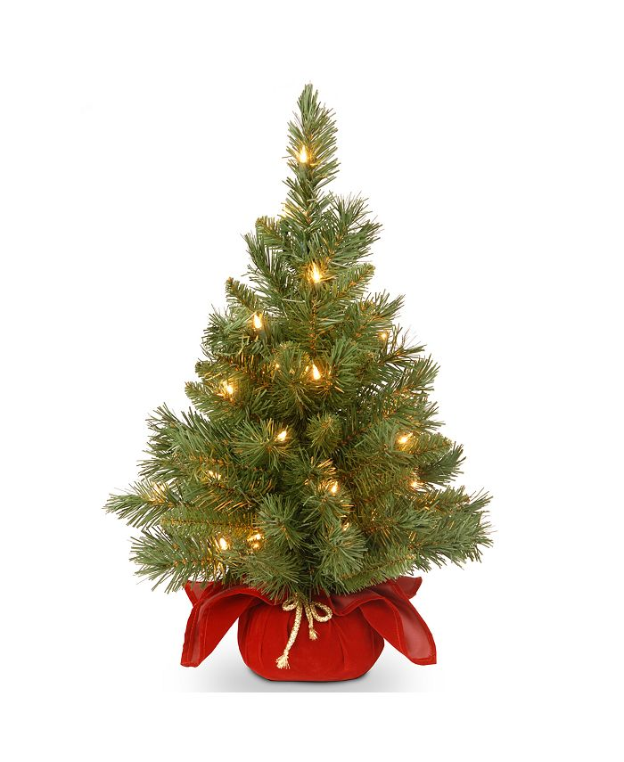 """National Tree Company - 24"""" Majestic Spruce Tree in Burgundy Cloth Bag with 35 Warm White Battery Operated LED Lights"""