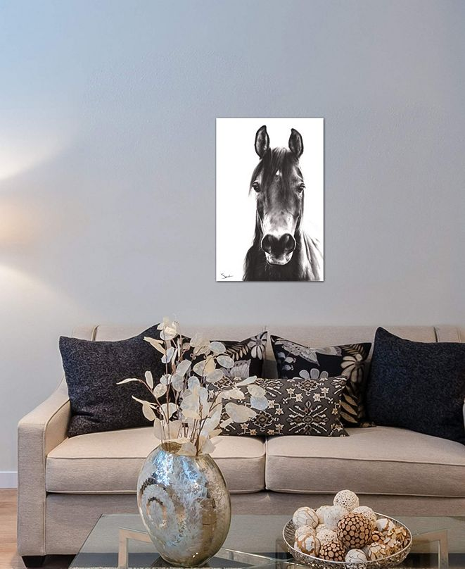 """iCanvas """"Horse Portrait"""" by Eric Sweet Gallery-Wrapped Canvas Print (40 x 26 x 0.75)"""