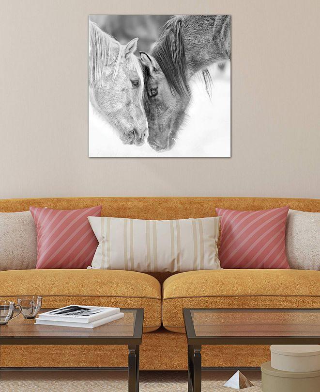 "iCanvas ""B&W Horses VII"" by PH Burchett Gallery-Wrapped Canvas Print (26 x 26 x 0.75)"