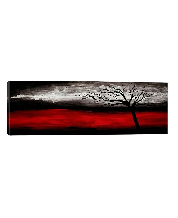 iCanvas Passion by Heather Offord Wrapped Canvas Print - 16 x 48