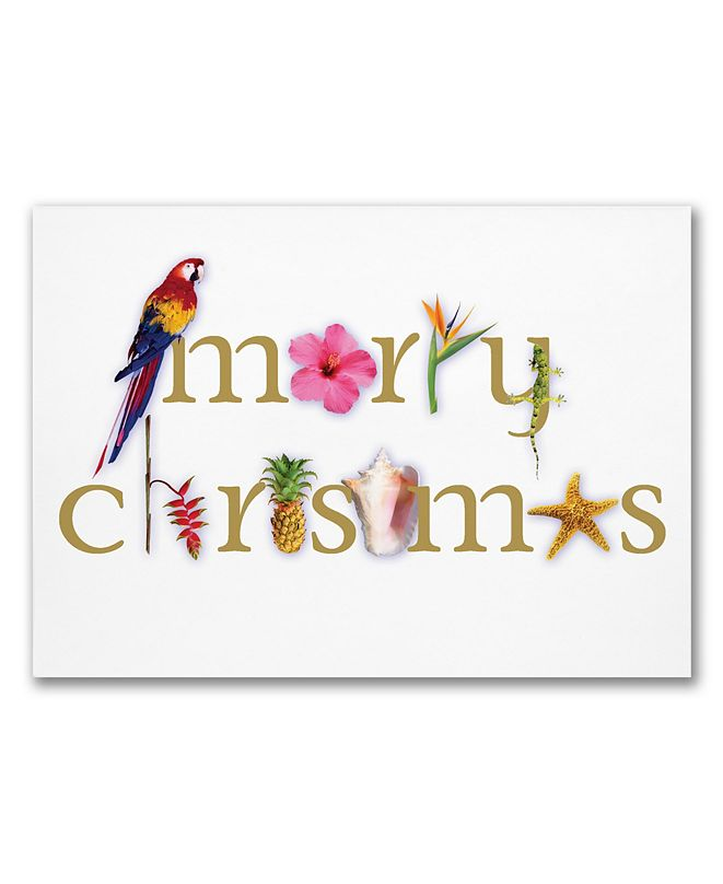 Masterpiece Cards Masterpiece Tropical Merry Christmas Holiday Boxed Cards