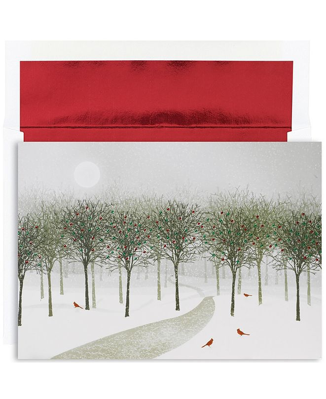 Masterpiece Cards Wintry park Holiday Boxed Cards, 16 Cards and 16 Envelopes