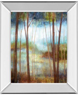 "Soft Forest Il by Nan Mirror Framed Print Wall Art - 22"" x 26"""