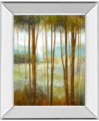 "Soft Forest I by Nan Mirror Framed Print Wall Art - 22"" x 26"""