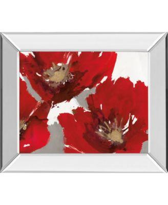 """Red Poppy Forest II by N. Barnes Mirror Framed Print Wall Art - 22"""" x 26"""""""