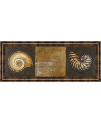 "Seashells I by Patricia Pinto Framed Print Wall Art - 18"" x 42"""