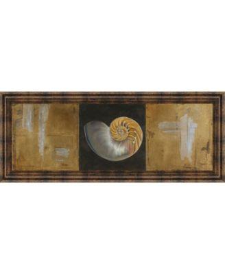 "Seashells Il by Patricia Pinto Framed Print Wall Art - 18"" x 42"""