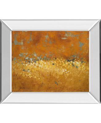 """Flower Fields I by Lanie Loreth Mirror Framed Print Wall Art, 22"""" x 26"""""""
