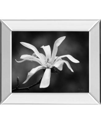 Magnolia Dreams I by Geyman Vitaly Mirror Framed Print Wall Art, 22