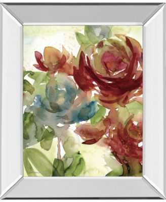 """Secret Garden II by Carol Robinson Mirror Framed Print Wall Art, 22"""" x 26"""""""