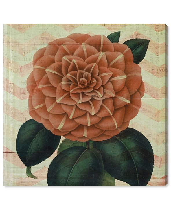 "Oliver Gal Striped Camellia Peach Canvas Art, 24"" x 24"""