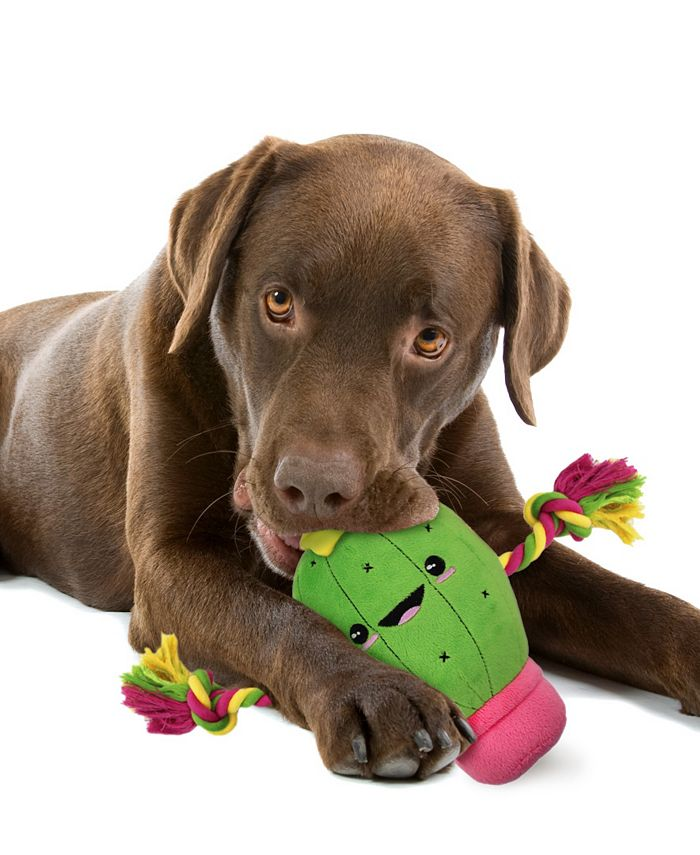 Pets First - Plush Cactus Pet Rope Toy W/ Squeaker
