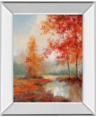 Autumns Grace I by T.C Chiu Mirror Framed Print Wall Art - 22