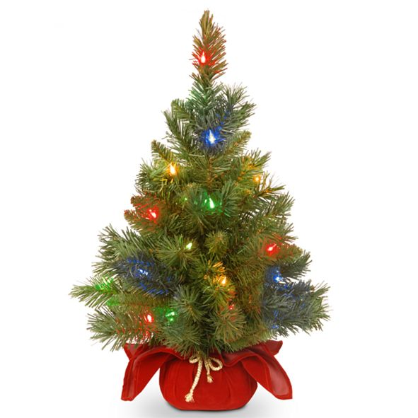 """National Tree Company 24"""" Majestic Spruce Tree in Burgundy Cloth Bag with 35 Multi Battery Operated LED Lights"""