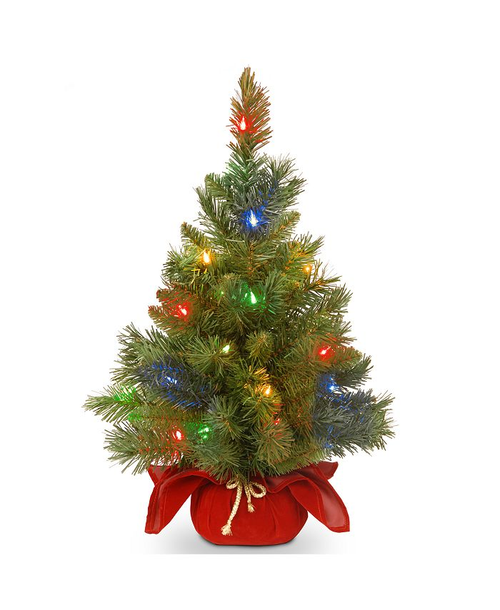 """National Tree Company - 24"""" Majestic Spruce Tree in Burgundy Cloth Bag with 35 Multi Battery Operated LED Lights"""