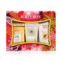 Deals on Burt's Bees 4-Pc. Face Essentials Gift Set