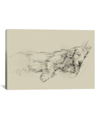 Dog Days Iii by Ethan Harper Wrapped Canvas Print - 18