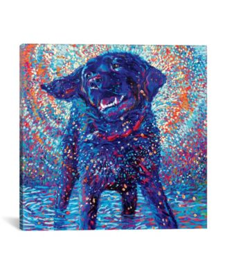 Canines & Color by Iris Scott Wrapped Canvas Print - 37