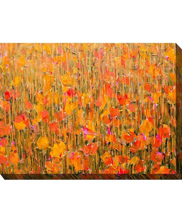 """West of the Wind Summer Rain Indoor/Outdoor Art, 40"""" x 30"""""""
