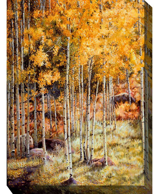 """West of the Wind Hidden Gold Indoor/Outdoor Art, 30"""" x 40"""""""