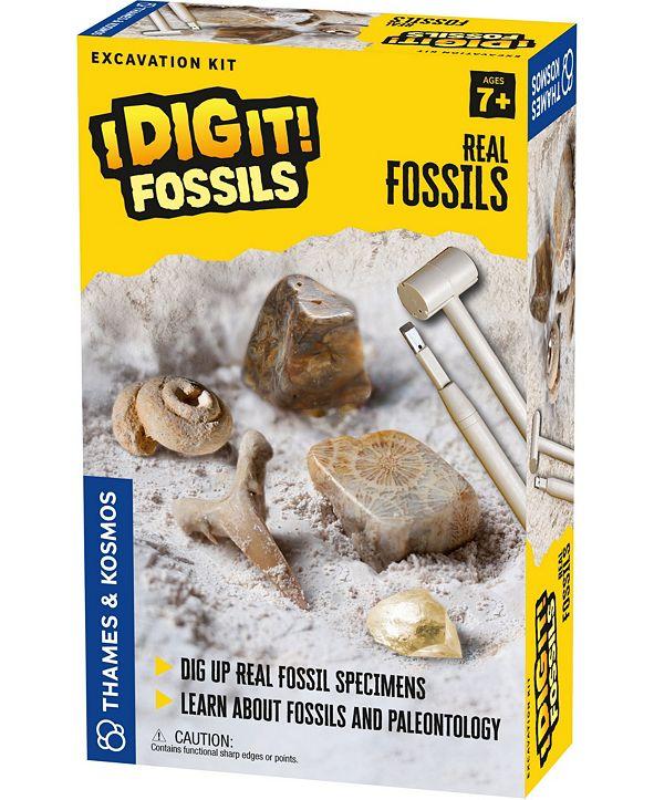 Thames & Kosmos I Dig It! Fossils - Real Fossils Excavation Kit