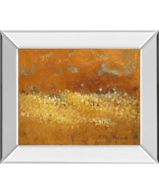 "Flower Fields II by Lanie Loreth Mirror Framed Print Wall Art, 22"" x 26"""