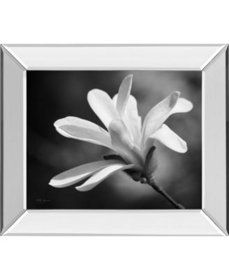 """Magnolia Dreams II by Geyman Vitaly Mirror Framed Print Wall Art, 22"""" x 26"""""""