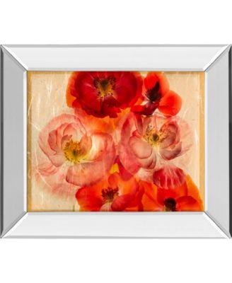 "Papaver Dreams I by Harold Davis Mirror Framed Print Wall Art, 22"" x 26"""