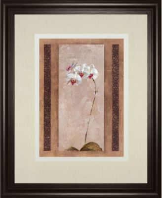 """Contemporary Orchid II by Carney Framed Print Wall Art, 34"""" x 40"""""""