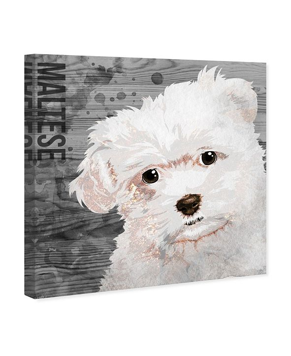 "Oliver Gal Love My Maltese Canvas Art, 12"" x 12"""