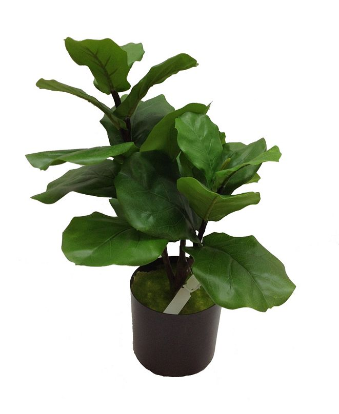 """Mills Floral 27"""" Fiddle Leaf Fig Topiary"""