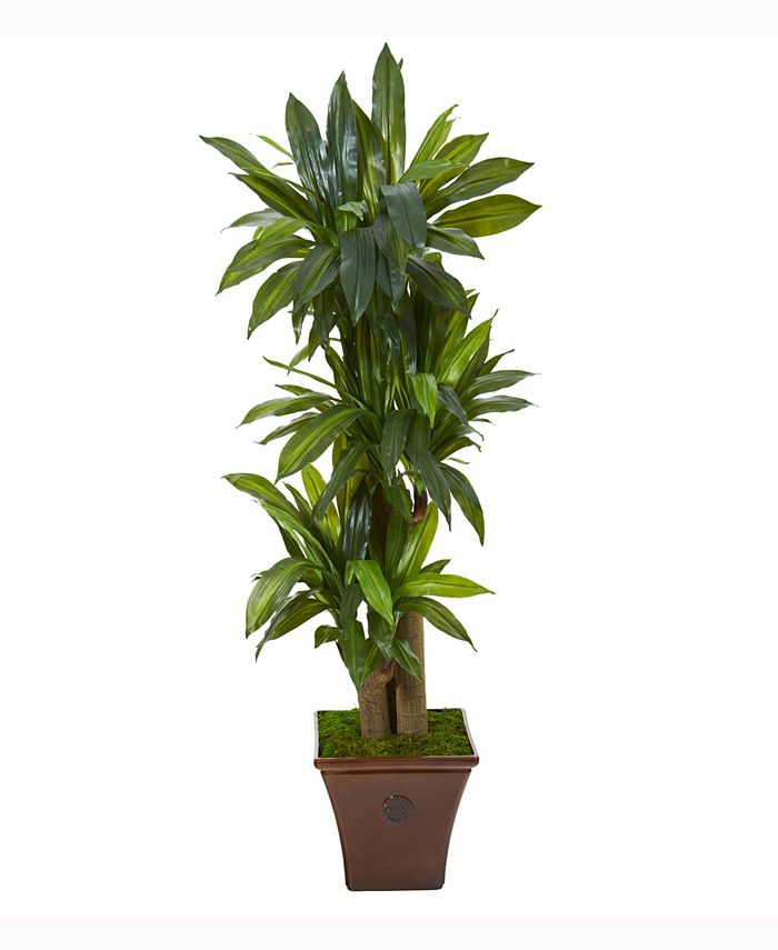 Nearly Natural - 57in. Corn Stalk Dracaena Artificial Plant in Brown Planter Real Touch