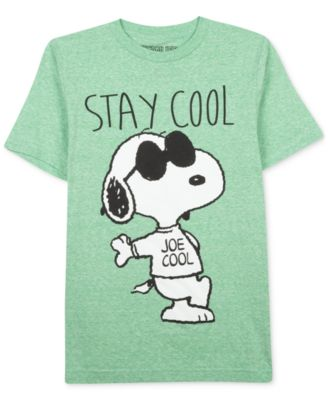 Peanuts Boys' Short Sleeve Snoopy Today I Am Cool T-Shirt - Kids ...
