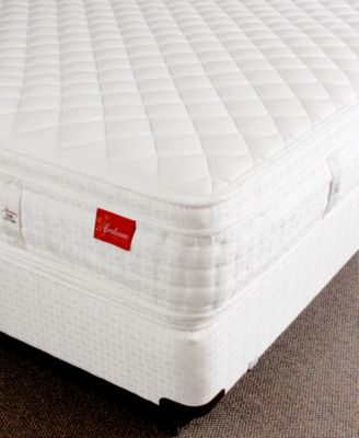 Aireloom Quot Vitagenic Quot Extra Firm Euro Pillowtop Hand