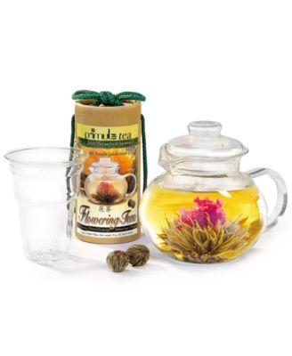 Primula Flowering Tea & Glass Teapot Gift Set