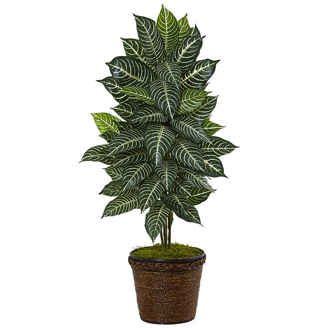 Nearly Natural 4' Zebra Artificial Plant in Coiled Rope Planter