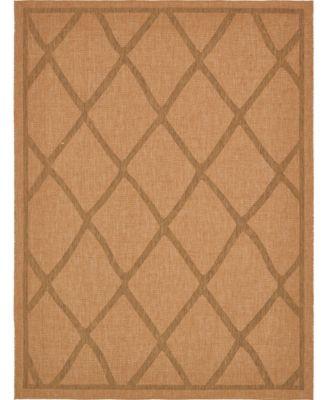 Pashio Pas7 Light Brown 9' x 12' Area Rug