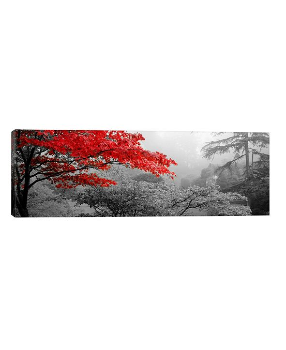 "iCanvas Trees In A Garden, Butchart Gardens, Victoria, Vancouver Isl by Panoramic Images Wrapped Canvas Print - 12"" x 36"""
