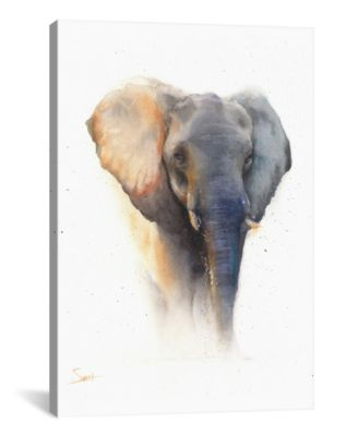 Elephant by Eric Sweet Wrapped Canvas Print - 26