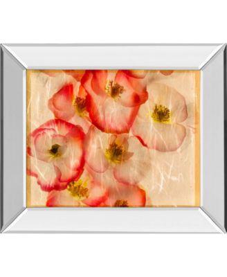 "Papaver Dreams III by Harold Davis Mirror Framed Print Wall Art, 22"" x 26"""