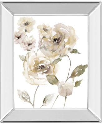 """Translucent Garden II by Nan Mirror Framed Print Wall Art, 22"""" x 26"""""""