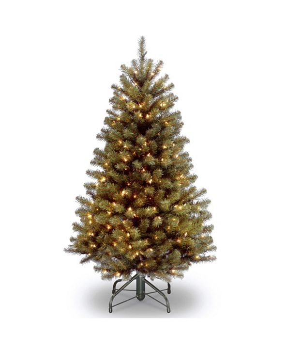 National Tree Company 5 ft. North Valley Spruce Tree with Clear Lights